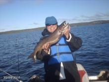 small lake trout