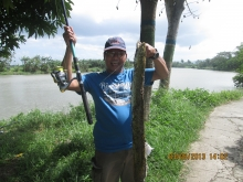Burirawan Anglers strike again.