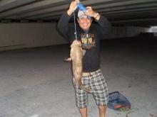 Fishing Under the Bridge 03 January 2014)