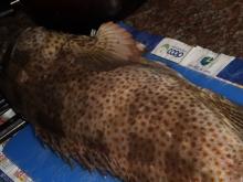 Marina Breakwater Fishing 14Feb2014