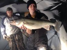 29.5 inch Walleye Jan 1 2014