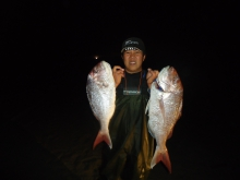 mednight snappers, big catch