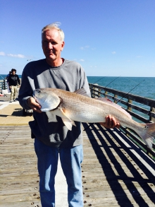 Bull Red fish at the Jax Beach Pier