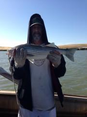 Delta ca 26 inch striper