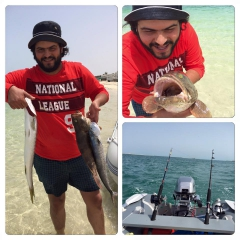 Hammour,kingfish,barracuda.