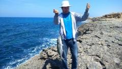 MY 1st Fish The Blue Fish