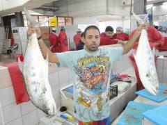 Ziad The Master Fisherman