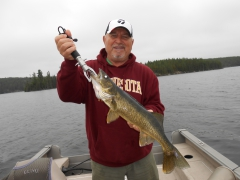 27.5 inch dog tooth lake snag.
