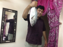 Snapper from Ajman UAE