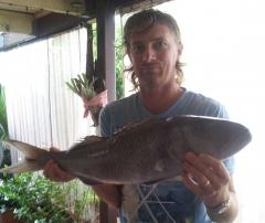 Job fish
