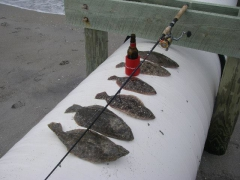 Never went crappie fishing in FL.