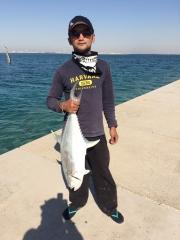 4.8 kilo queenfish