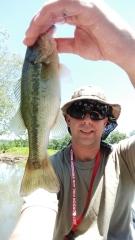 Savannah river bass