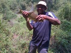 Watson with a Zambian carp