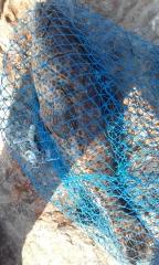 MARINA MALL BREAKWATER FISHING 14Oct2016