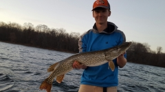 38 inch pike on millelacs