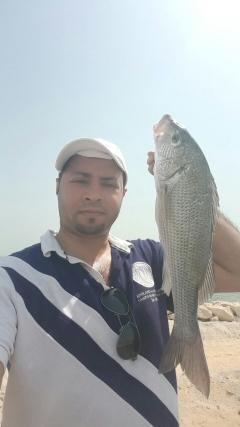 Muzaiai in Qatif