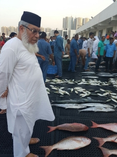 Fresh catches in Ajman, Fish market