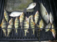Winter fishing in MD.