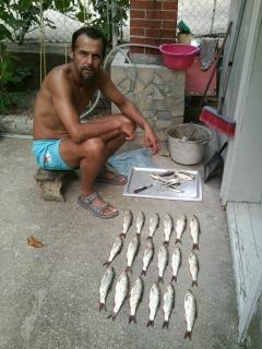 Fishing skobalja, šljivara.