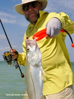 snook with DUO lure