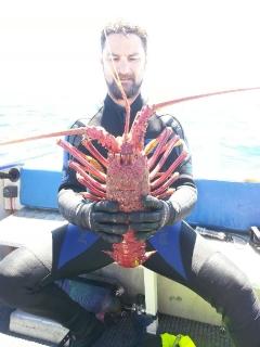 Jumbo Crayfish 145mm