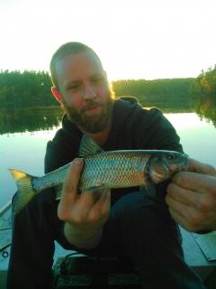 Biggest fall fish we've caught.