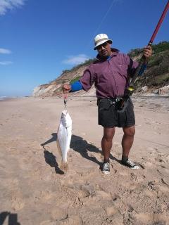 3.5kg Salmon