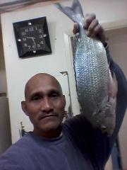Sorbetes Fish