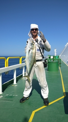 Gold Spotted Trevally, 6Kg