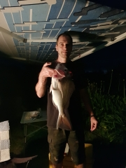 Surfcasting at night. Good snapper after sunset.