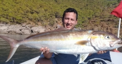 Amberjack is always a big challenge (15kg)