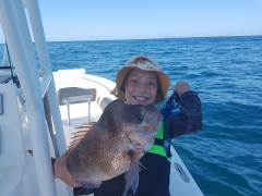 Coffs Harbour Snapper