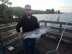 42 inch red. Palm bay fl
