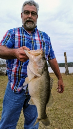 Bass from Lake Tholocco