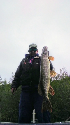 The pike fishing on Lake CD'A is hot right now