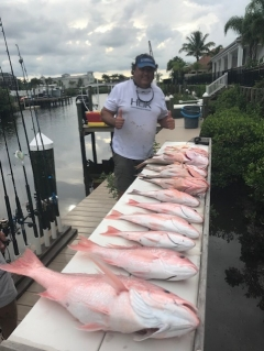 Red Snapper & Red Grouper