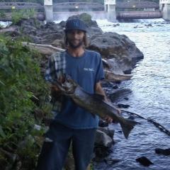 spring king salmon