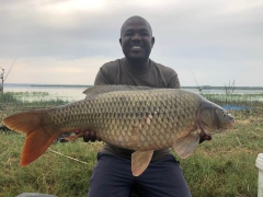Roodekopies Dam Common carp 12,3