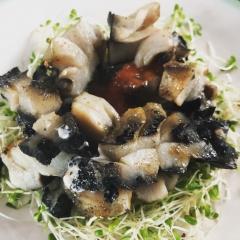 Paua, Abalone from New Zealand!