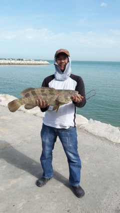 my first grouper in KSA