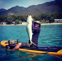Kingfish caught on my paddle board