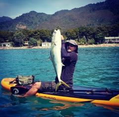Kingfish caught on my paddle board