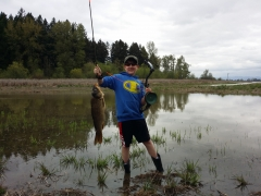 My Son's first bowfishing Carp.