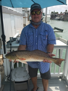 "28"" Red Drum"