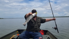 """18"""" Speckled Trout"""