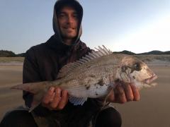 Nice snapper off the beach in Waikawau - drone fishing