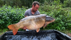Common carp 60lbsthis one was caught on a single high-viz homemade  pop up