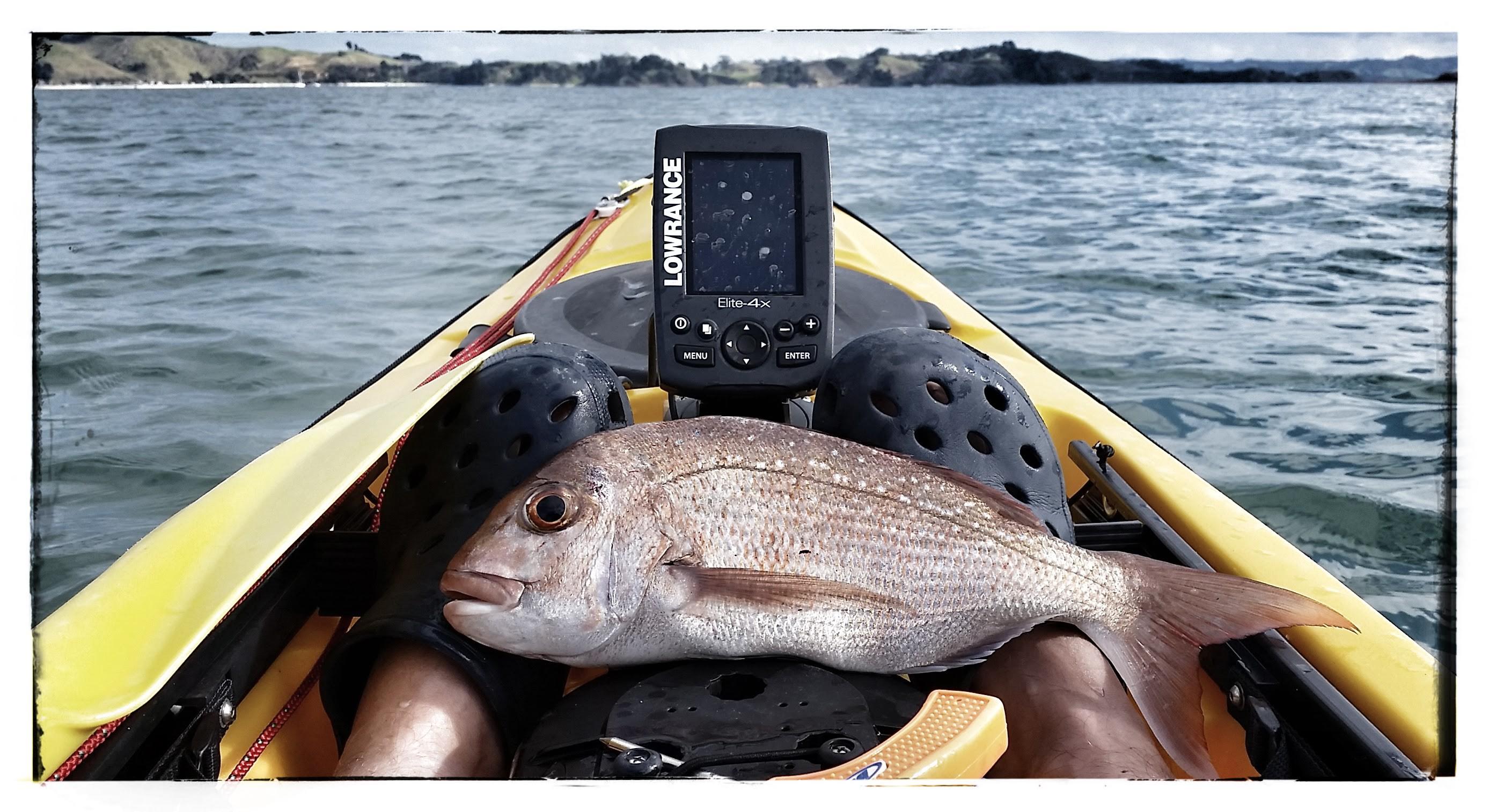 Lake lavon blue cat records for Lake lavon fishing
